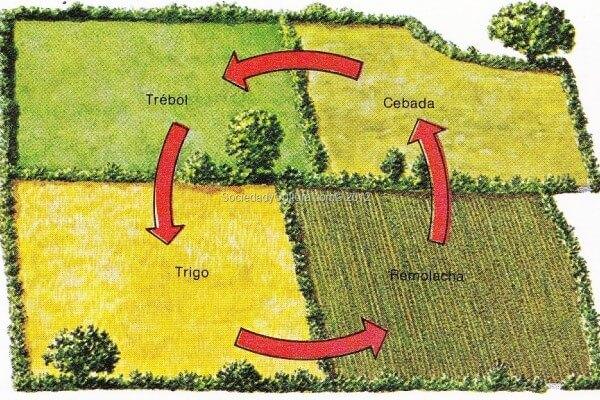 historia de la agricultura en España
