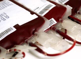origen e historia de la sangre artificial