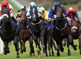 origen e historia de las carreras de caballos