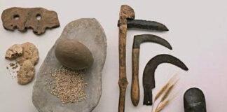 primeras herramientas humanas historia
