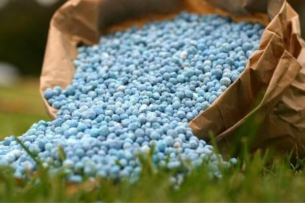Origen de los abonos y fertilizantes