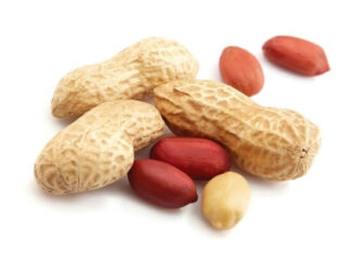 origen e Historia del cacahuete