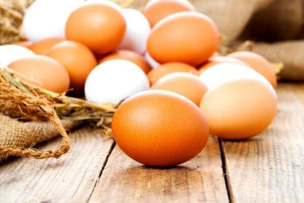Origen del huevo