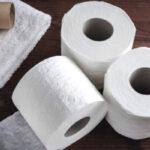 origen e historia del papel higiénico