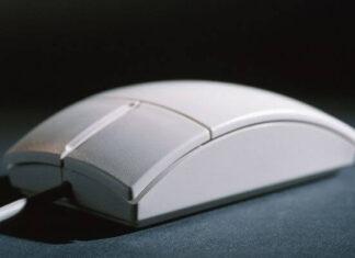 Origen del ratón