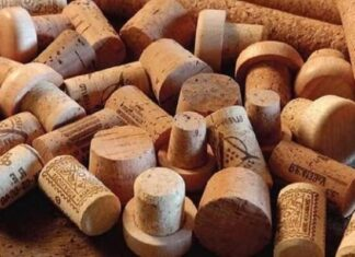 origen e Historia del tapón de corcho