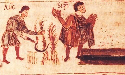 Imagen plantación de arroz imperio romano