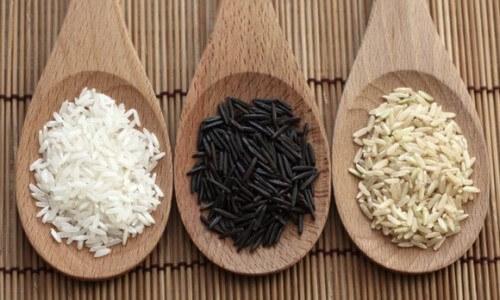 origen del arroz en España