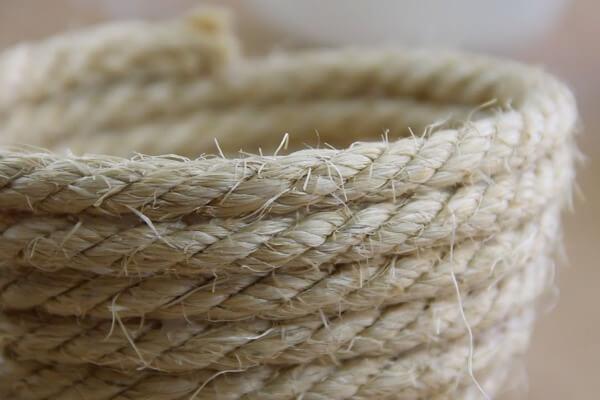 origen e historia de la cuerda