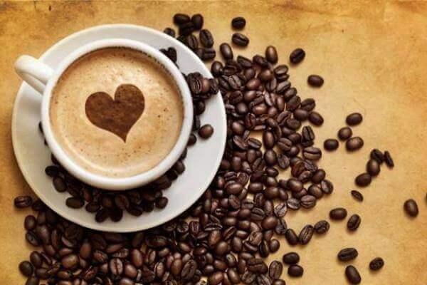 origen e historia del café