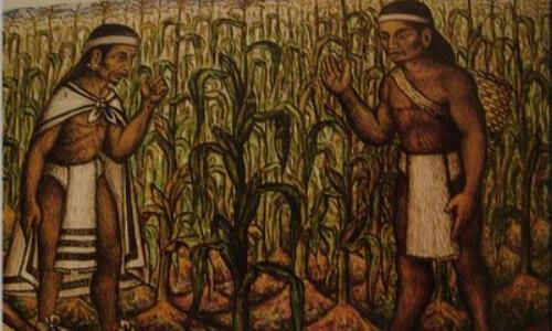 historia del maíz
