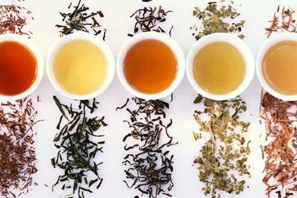 historia del té verde