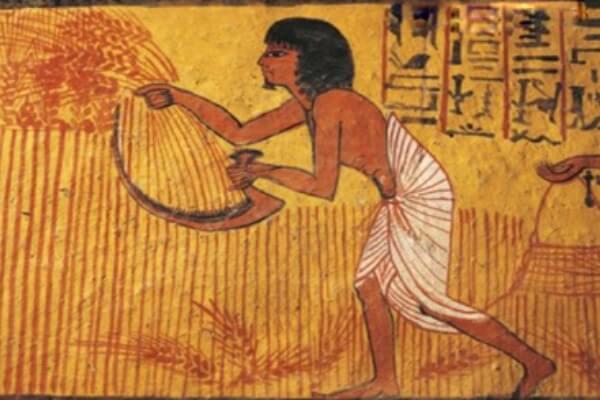 historia agricultura Egipto