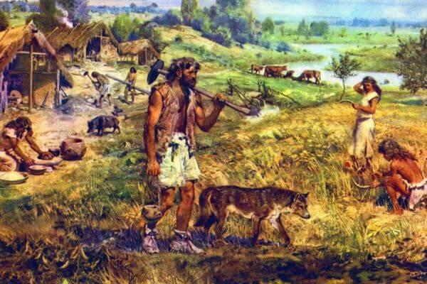 ¿Cómo se originó la agricultura?