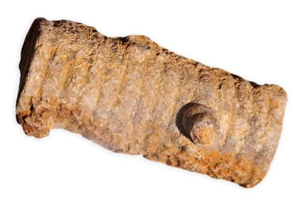 cuál es el origen del tonillo