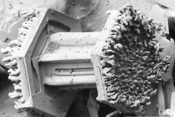 historia Microscopio de positrones
